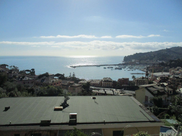 Appartamento in vendita a Santa Margherita Ligure, Arredato, con giardino, 110 mq - Foto 20