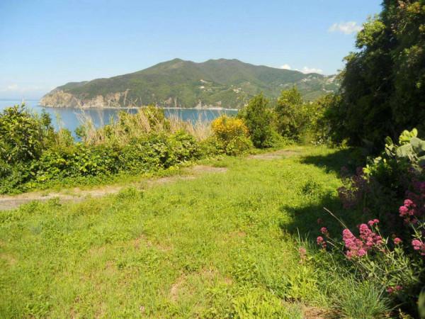 Casa indipendente in vendita a Moneglia, Lemeglio, Con giardino, 1000 mq - Foto 13