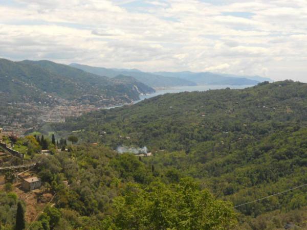 Appartamento in vendita a Rapallo, San Martino Di Noceto, 70 mq - Foto 9