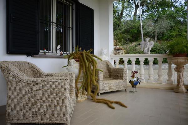 Villa in vendita a Altomonte, Con giardino, 250 mq - Foto 26