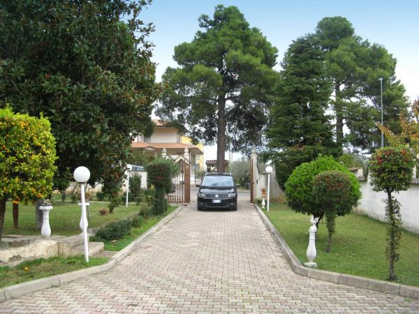Villa in vendita a Collecorvino, Centro, Con giardino, 302 mq - Foto 17