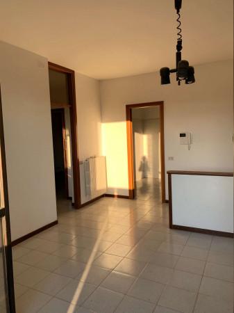 Appartamento in affitto a Cesate, Parco, 170 mq - Foto 1