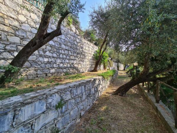 Villa in vendita a Chiavari, Residenziale, Con giardino, 300 mq - Foto 9