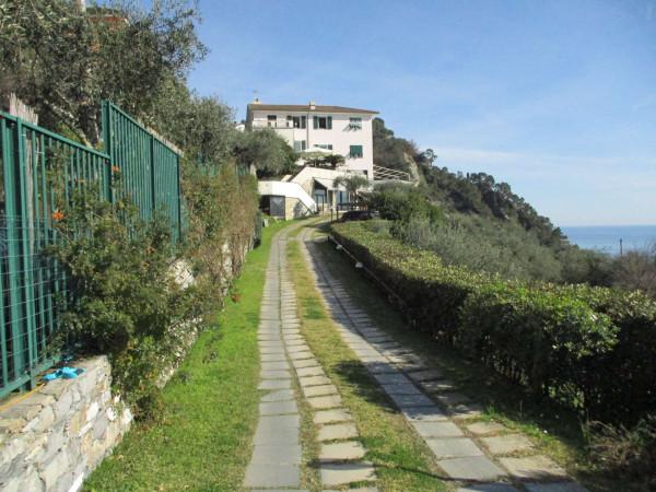 Villa in vendita a Zoagli, Con giardino, 670 mq - Foto 20