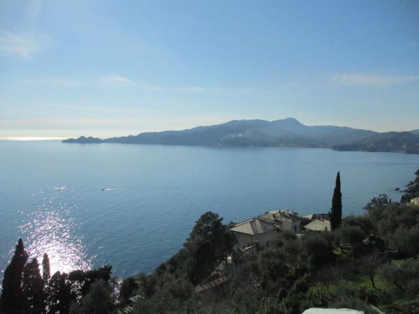 Villa in vendita a Zoagli, Con giardino, 670 mq - Foto 17