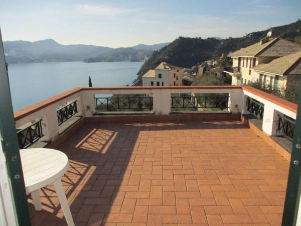 Villa in vendita a Zoagli, Con giardino, 670 mq - Foto 15