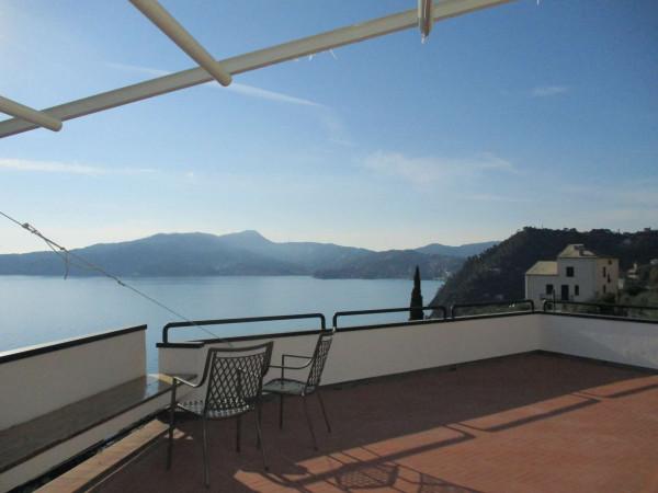 Villa in vendita a Zoagli, Con giardino, 670 mq - Foto 12