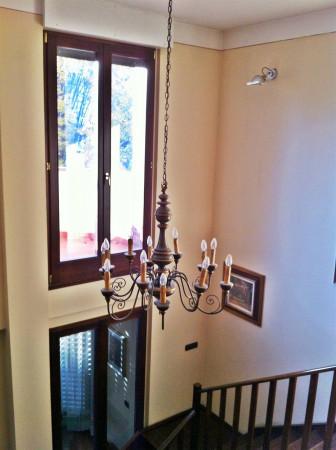 Appartamento in vendita a Città di Castello, Limitrofo Centro Storico, Con giardino, 510 mq - Foto 30