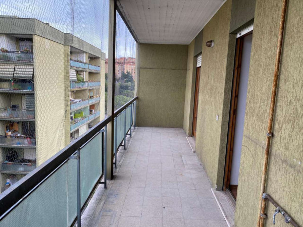 Appartamento in vendita a Roma, Eur Torrino, Con giardino, 95 mq - Foto 3