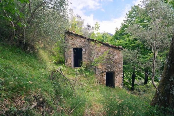 Locale Commerciale  in vendita a Camaiore, Casoli, Con giardino, 79 mq - Foto 7