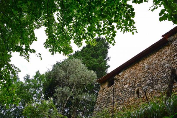 Locale Commerciale  in vendita a Camaiore, Casoli, Con giardino, 79 mq - Foto 3