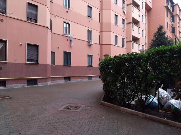 Appartamento in vendita a Milano, Con giardino, 56 mq - Foto 6