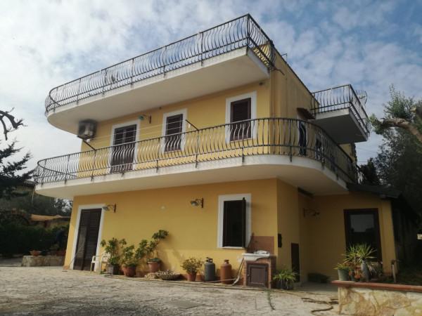 Villa in vendita a Balestrate, Con giardino, 225 mq - Foto 10