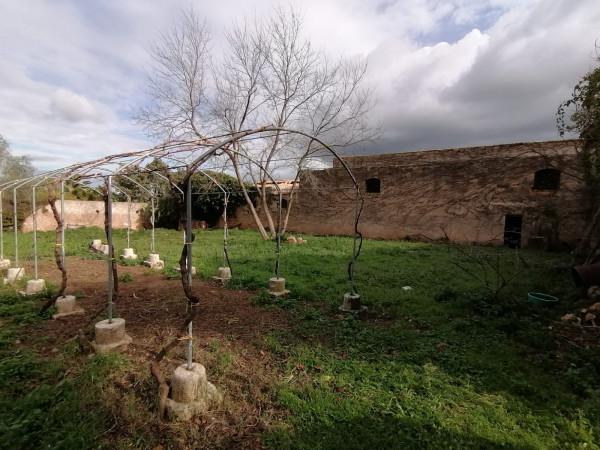 Locale Commerciale  in vendita a Partinico, Bosco Falconeria, 90 mq