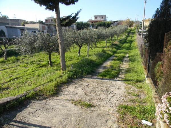 Locale Commerciale  in vendita a Balestrate, Con giardino, 1400 mq - Foto 3