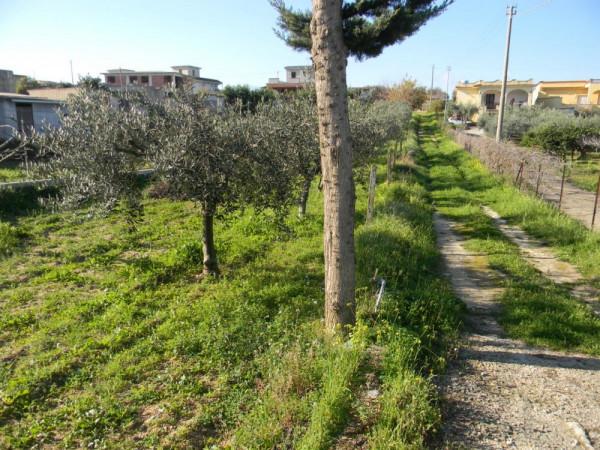 Locale Commerciale  in vendita a Balestrate, Con giardino, 1400 mq - Foto 12