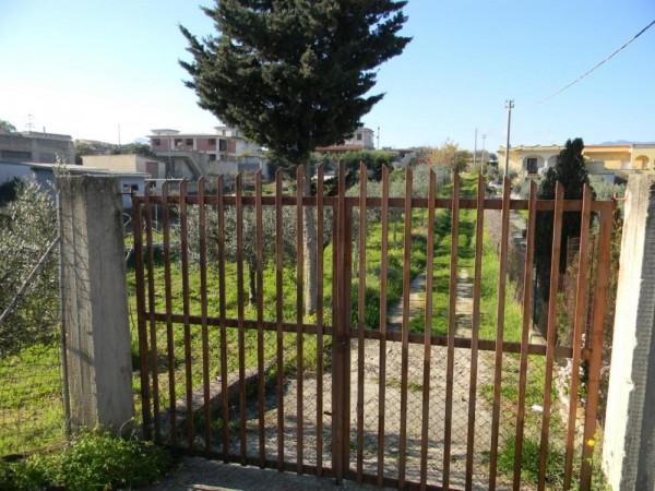 Locale Commerciale  in vendita a Balestrate, Con giardino, 1400 mq - Foto 1