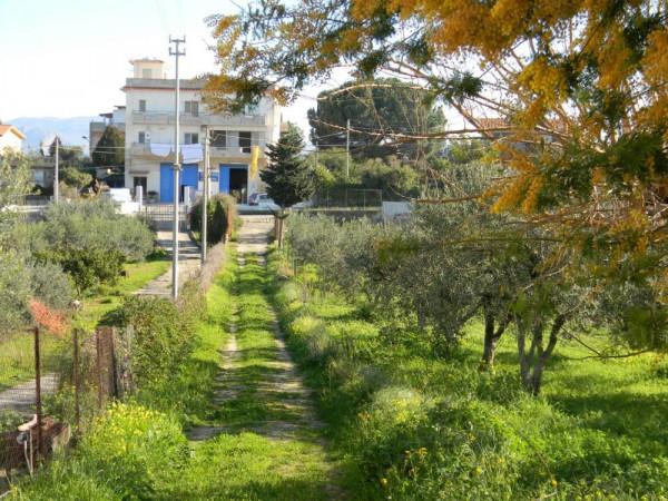 Locale Commerciale  in vendita a Balestrate, Con giardino, 1400 mq - Foto 15