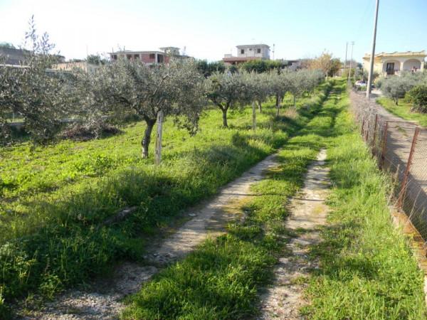 Locale Commerciale  in vendita a Balestrate, Con giardino, 1400 mq - Foto 13