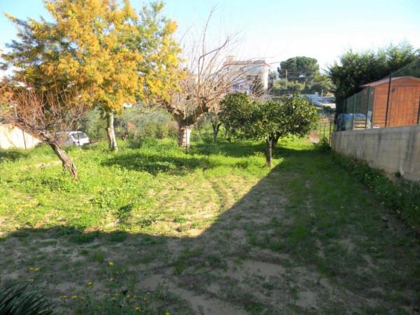 Locale Commerciale  in vendita a Balestrate, Con giardino, 1400 mq - Foto 11