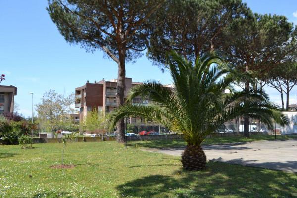 Appartamento in vendita a Roma, Dragoncello, Con giardino, 70 mq - Foto 5