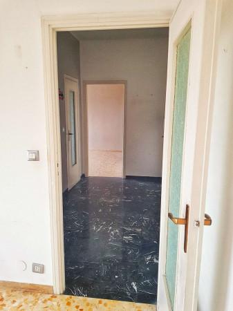 Appartamento in affitto a Rivoli, Borgo Uriola, 60 mq - Foto 5