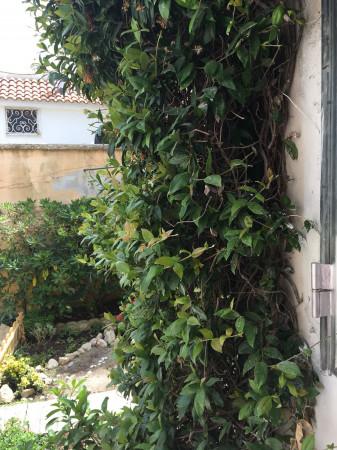 Casa indipendente in vendita a Giugliano in Campania, Lago Patria, Con giardino, 70 mq - Foto 20