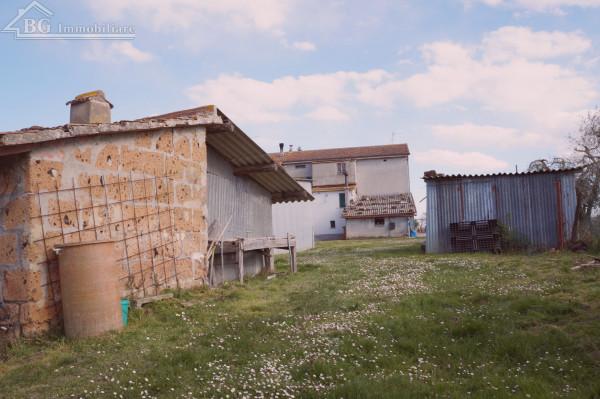 Casa indipendente in vendita a Castiglione del Lago, Badia, Con giardino, 160 mq - Foto 17