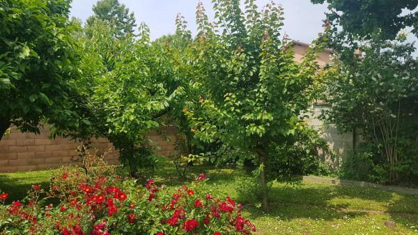 Rustico/Casale in vendita a San Giuliano Milanese, Viboldone, Con giardino, 291 mq - Foto 13