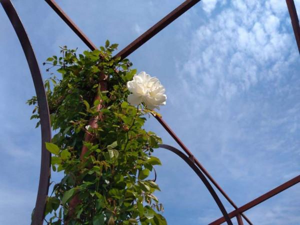 Appartamento in affitto a Pollena Trocchia, Centrale, 150 mq - Foto 10