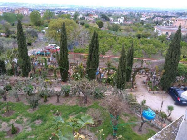 Appartamento in affitto a Pollena Trocchia, Centrale, 150 mq - Foto 12