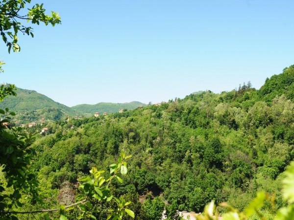 Locale Commerciale  in vendita a Serra Riccò, Prelo, Con giardino, 178 mq - Foto 14