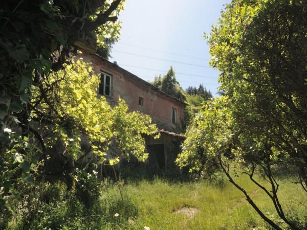 Locale Commerciale  in vendita a Serra Riccò, Prelo, Con giardino, 178 mq - Foto 10