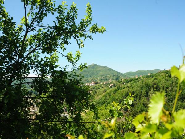 Locale Commerciale  in vendita a Serra Riccò, Prelo, Con giardino, 178 mq - Foto 13