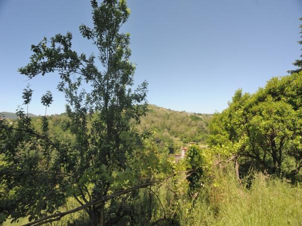 Locale Commerciale  in vendita a Serra Riccò, Prelo, Con giardino, 178 mq - Foto 12