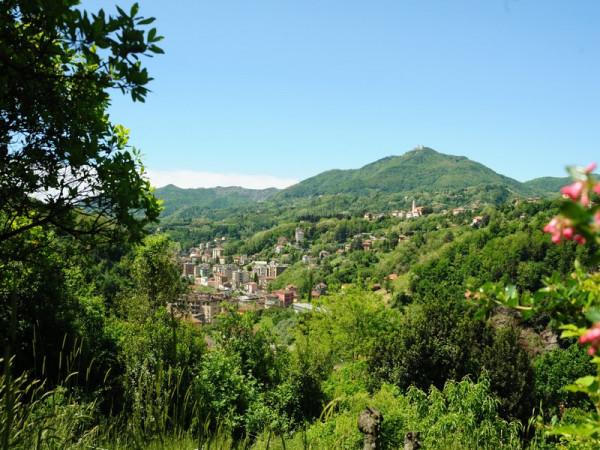 Locale Commerciale  in vendita a Serra Riccò, Prelo, Con giardino, 178 mq - Foto 15