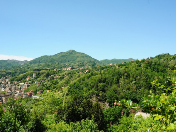 Locale Commerciale  in vendita a Serra Riccò, Prelo, Con giardino, 178 mq - Foto 16