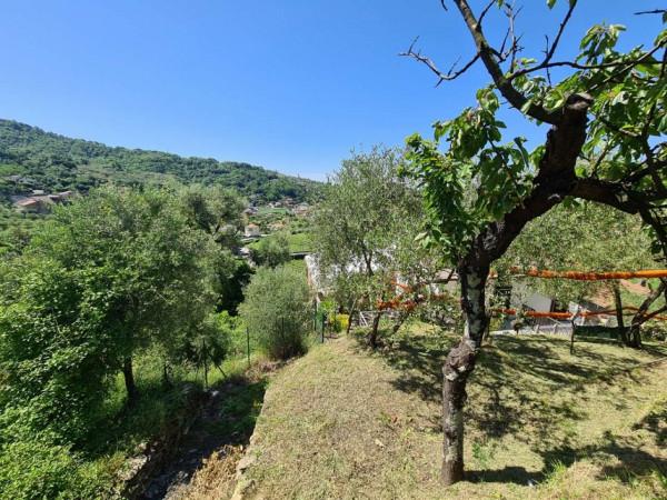 Villa in vendita a Cogorno, Basilica Dei Fieschi, Con giardino, 75 mq - Foto 9