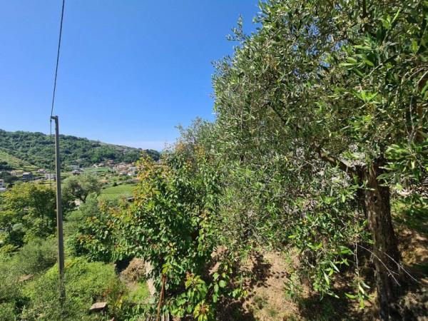 Villa in vendita a Cogorno, Basilica Dei Fieschi, Con giardino, 75 mq - Foto 8