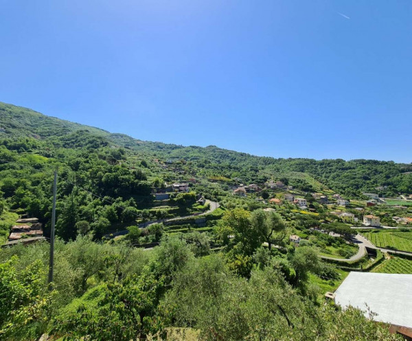 Villa in vendita a Cogorno, Basilica Dei Fieschi, Con giardino, 75 mq - Foto 6