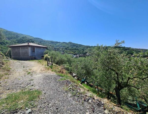 Villa in vendita a Cogorno, Basilica Dei Fieschi, Con giardino, 75 mq - Foto 18