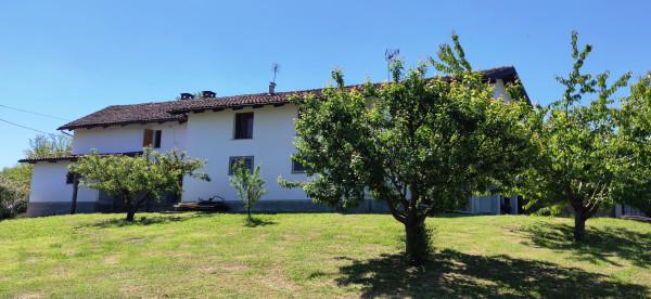 Rustico/Casale in vendita a Celle Enomondo, Merlazza, Con giardino, 300 mq - Foto 20