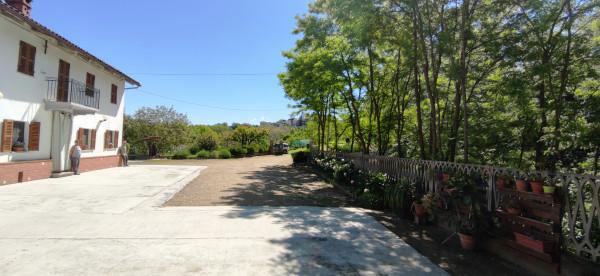Rustico/Casale in vendita a Celle Enomondo, Merlazza, Con giardino, 300 mq - Foto 14
