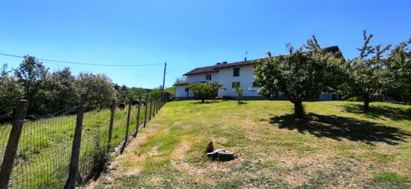 Rustico/Casale in vendita a Celle Enomondo, Merlazza, Con giardino, 300 mq - Foto 21