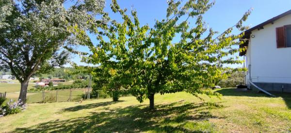 Rustico/Casale in vendita a Celle Enomondo, Merlazza, Con giardino, 300 mq - Foto 16