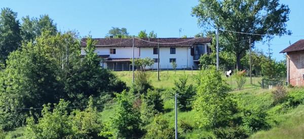 Rustico/Casale in vendita a Celle Enomondo, Merlazza, Con giardino, 300 mq - Foto 37