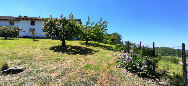 Rustico/Casale in vendita a Celle Enomondo, Merlazza, Con giardino, 300 mq - Foto 22
