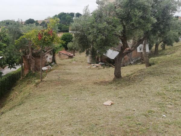 Casa indipendente in vendita a Monte San Pietrangeli, Semicentro, Con giardino, 90 mq - Foto 12