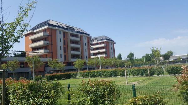 Appartamento in affitto a Milano, Ripamonti, Arredato, con giardino, 50 mq - Foto 9