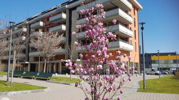 Appartamento in affitto a Milano, Ripamonti, Arredato, con giardino, 50 mq - Foto 8
